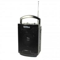 Радиоприемник Сигнал Vikend Walk (FM,USB,microSD,фонарь,акб,2*R20,220v)
