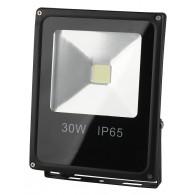 Прожектор светодиодный Эра LPR-30-6500K-M