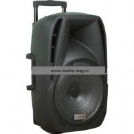 "Колонка портативная AIWA BS15-4 (Bluetooth/USB /microSD/FM/микрофон) чер, 15"""