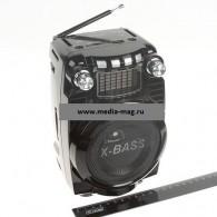 Колонка портативная RX-X5ch (USB /SD/FM/дисплей/караоке) черная
