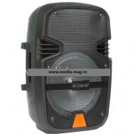 Колонка портативная AIWA А8ch черная (Fm, microSD, USB, Bluetooth,микрофон)