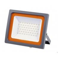 Прожектор светодиодный Jazzway PFL -SС - 50W IP65 (матовое стекло)