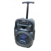 Колонка портативная 2*6.5 (ZSQ-6111ch) (Bluetooth/USB /FM/микрофон/пульт