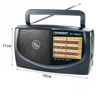 Радиоприемник Горизонт SC-308AC (2*R20/220V)